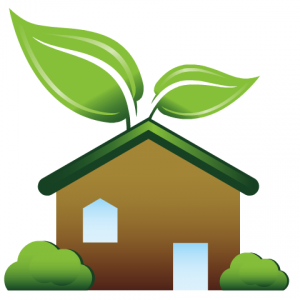 Effective Ways to Create a Green Home