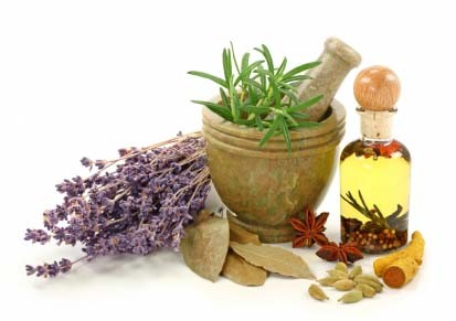 Are Herbal Remedies Effective in Pets?