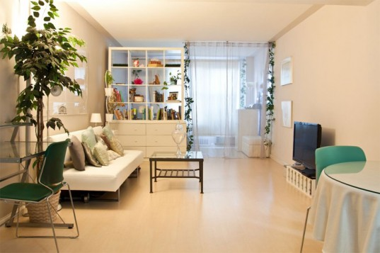 3 Simple Ways to Go Green in Your City Apartment